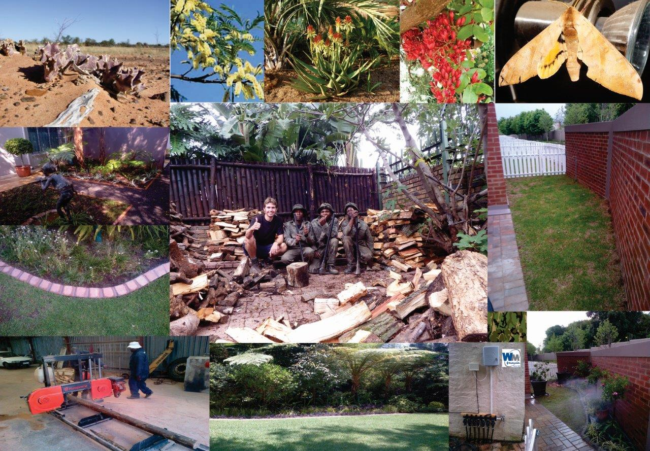 Website Home Page Small